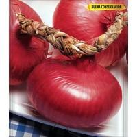 Semillas Cebolla Roja de Zalla. 5 Gr.