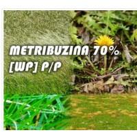 Metribuzina 70% [Wp] P/p - 500 G