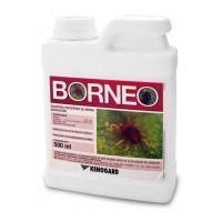 Borneo, Acaricida Kenogard
