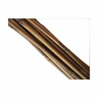 Tutores de Bambú 90 Cm. (70 Unidades)