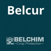 Belcur, Triazol Sistémico con Actividad Fungicida Preventiva, Curativa y Erradicante  Belchim