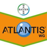 Atlantis WG, Herbicida Bayer