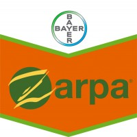Zarpa, Herbicida Pre y Post Emergencia Bayer