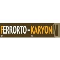 Ferrorto-Karyon, Abono CE Karyon