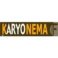 Karyonema, Activador de Autodefensas Karyon