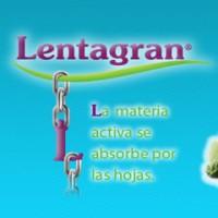 Lentagran, Herbicida de Post Emergencia Belchim