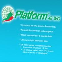 Platform 40 WG, Herbicida para el Control de Malas Hierbas de Hoja Ancha en Cereales Belchim