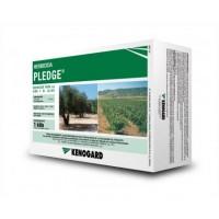 Pledge, Herbicida Kenogard