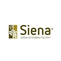 Siena, Azoxistrobin Folpet, Fungicida Aragro