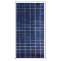 Panel Solar Fotovoltaico 80 Watios 12 Voltios