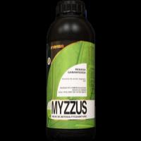 Myzzus, Eco-Logic Arvensis