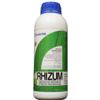 Rhizum, Aminoácidos Arvensis