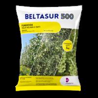 Beltasur 500, Fungicida Probelte