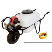 Carretilla 1 Rueda Motor Electrico 100 Litros