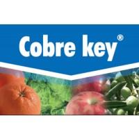 Cobre Key, Fungicida Key