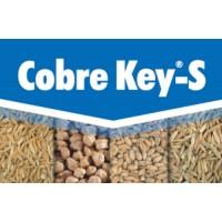 Cobre Key-S, Fungicida Key