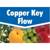 Copper Key Flow, Fungicida Key