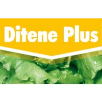 Ditene Plus, Mojante Key