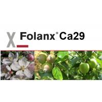 Folanx Ca29, Abono CE Key
