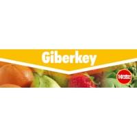 Giberkey, Fitorregulador Key