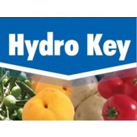 Hydro Key, Fungicida Key