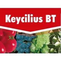 Keycilius BT, Insecticidas Acaricidas Key