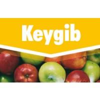 Keygib, Fitorregulador Key