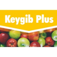 Keygib Plus, Fitorregulador Key