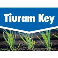 Tiuram Key, Fungicida Key