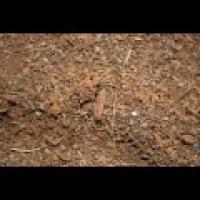 Cocoterra 3/4 Hidratado en SACO de 70Litros