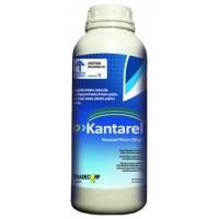 Kantarel, Fungicida Tradecorp