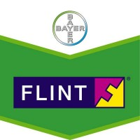 Flint, Fungicida de Amplio Espectro Bayer 15 G