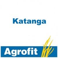 Katanga, Fungicida Agrofit