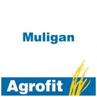Muligan, Insecticida Agrofit