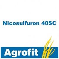 Nicosulfuron 40 SC, Herbicida Agrofit