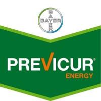 Previcur Energy, Fungicida Sistémico Bayer