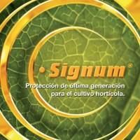 Signum WG, Fungicida Basf