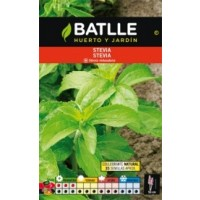 Planta de Stevia Rebaudiana en Maceta de 17 Cen+Folleto