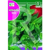 Planta Hierbabuena/mentha Spicata m.10