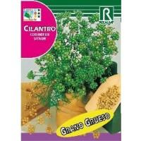 Semillas Aromaticas-Sobre Cilantro/coriandrum