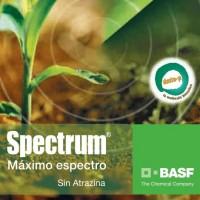 Spectrum, Herbicida Basf
