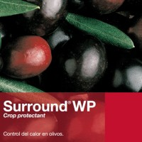 Surround WP, Insecticidas Basf